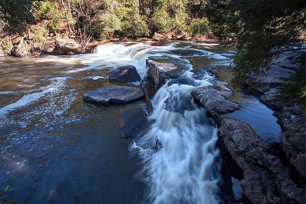 Swallow Falls State Park Wall Art - Photograph - Lower Swallow Falls by Gene Walls
