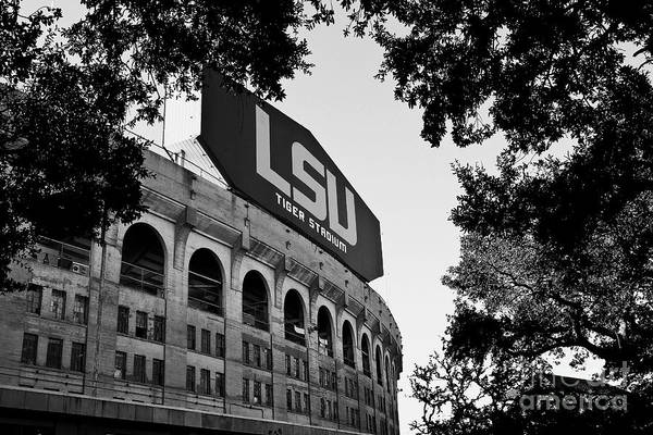Mono Photograph - Lsu Through The Oaks by Scott Pellegrin