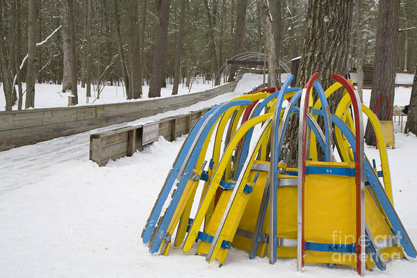 Photograph - Luge Sleds by Jim West
