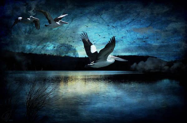Wall Art - Digital Art - Luminous Moonlight by Margaret Hormann Bfa