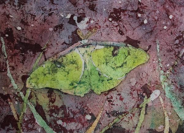 Painting - Luna Moth by Ruth Kamenev