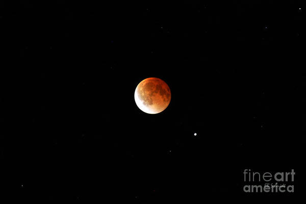 Photograph - Lunar Eclipse by E B Schmidt