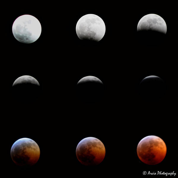 Photograph - Lunar Eclipse by Ken Arcia