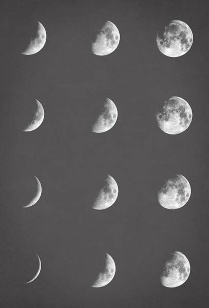 Full Moon Wall Art - Digital Art - Lunar Phases by Zapista Zapista