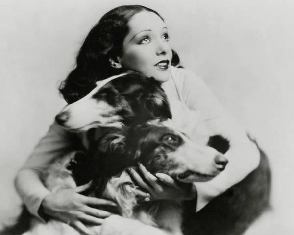 Photograph - Lupe Velez With Dogs by Irving Chidnoff