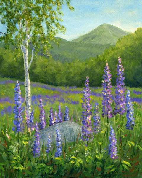 New Hampshire Painting - Lupine At Sugar Hill, Nh by Elaine Farmer