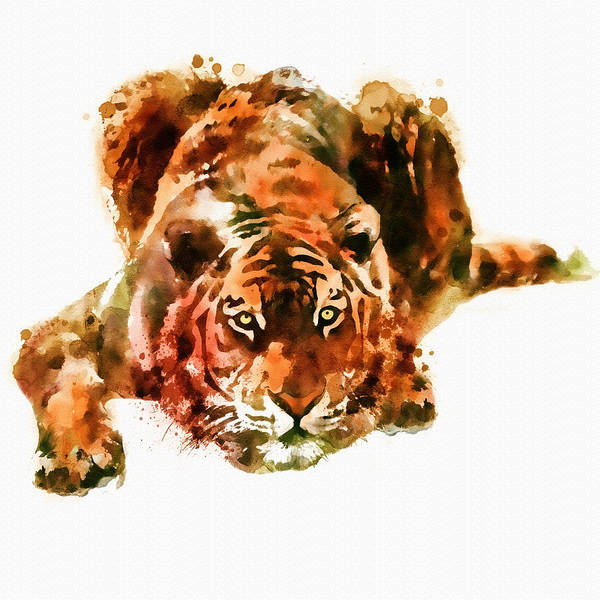 Bengal Tiger Painting - Lurking Tiger by Marian Voicu