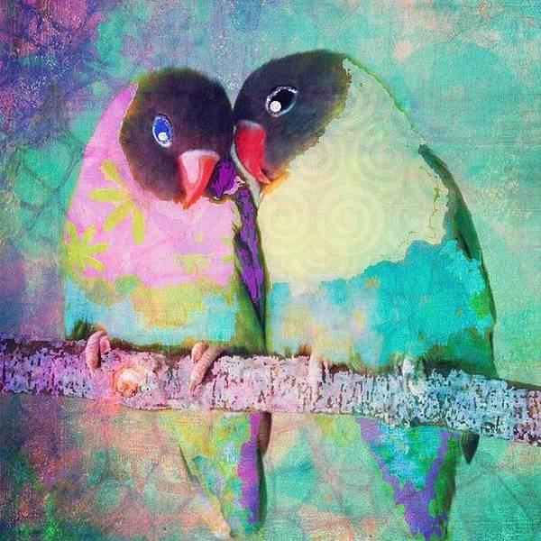 Wall Art - Photograph - Luvbirds...a #digitalcollage #birdart by Robin Mead