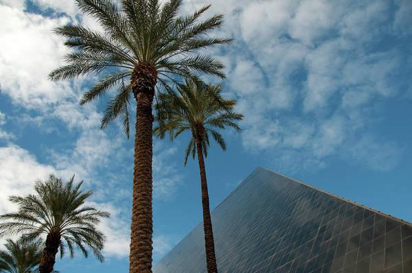 Luxury Hotel Photograph - Luxor Pyramid And Palms by Mitch Diamond