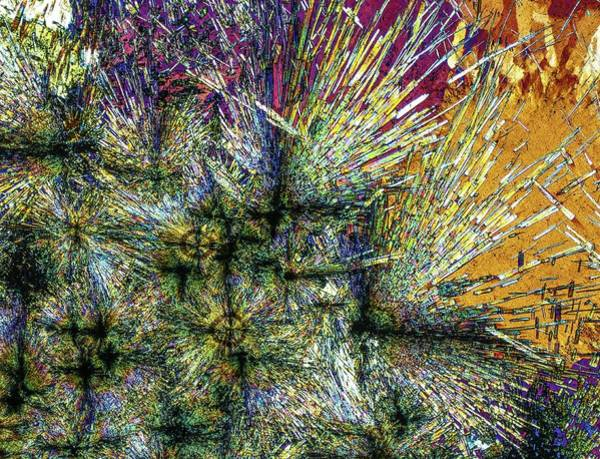 Light Micrograph Photograph - Luxulyanite by Alfred Pasieka