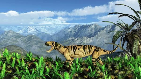Palaeozoology Wall Art - Photograph - Lycaenops Carnivore by Walter Myers