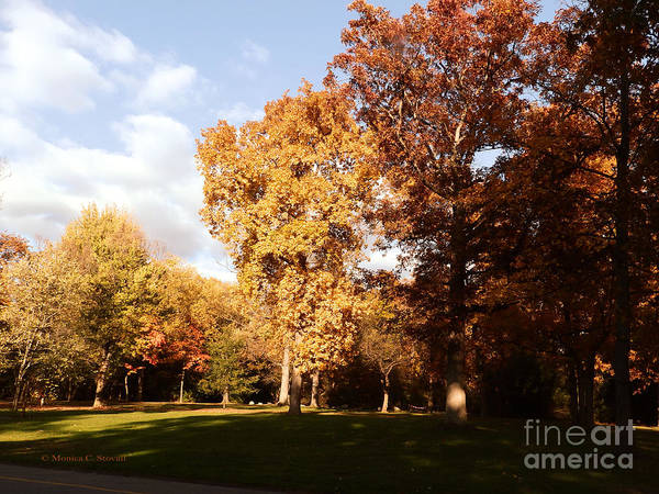 Photograph - M Landscapes Fall Collection No. Lf30 by Monica C Stovall