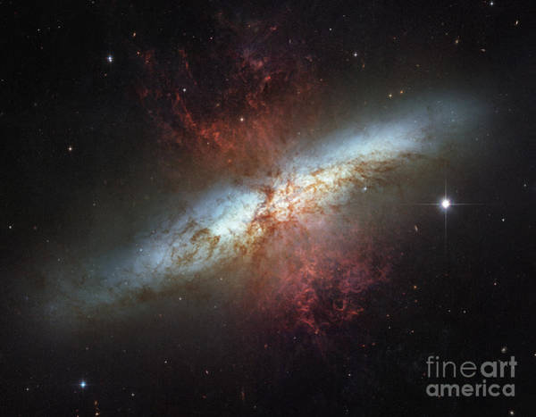 Photograph - M82-ngc 3034-cigar Galaxy by Science Source