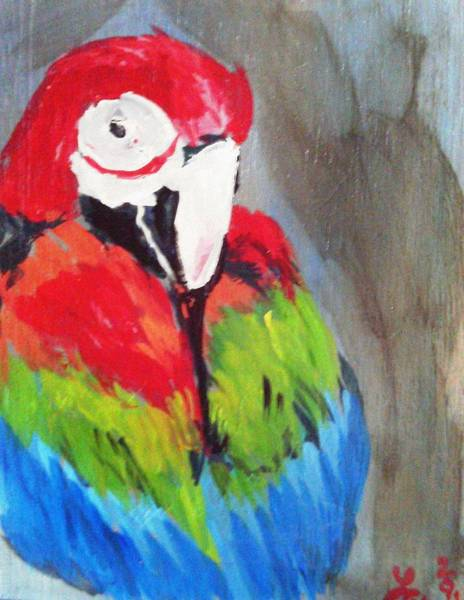 Painting - Macaw 2 by Loretta Nash