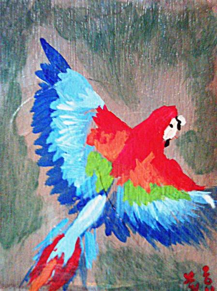 Painting - Macaw In Flight by Loretta Nash