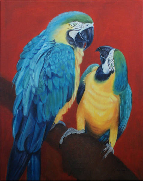 Painting - Macaws   by Jill Ciccone Pike