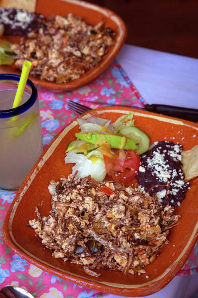 Jalisco Photograph - Machaca, Shredded Beef Breakfast, El by Douglas Peebles