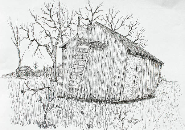 Whitetail Drawing - Machine Shed Stand by Jack G  Brauer