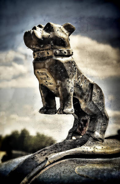 B61 Wall Art - Photograph - Mack Truck Hood Ornament  by Ken Smith