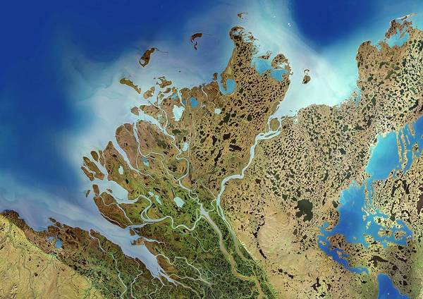 River Delta Photograph - Mackenzie River Delta by Planetobserver/science Photo Library