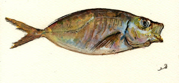Bait Wall Art - Painting - Mackerel Scad by Juan  Bosco