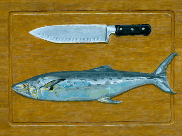 Drawing - Mackerel The Kinfe by Dominic White