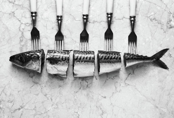 Wall Art - Photograph - Mackerel&forks by Aleksandrova Karina