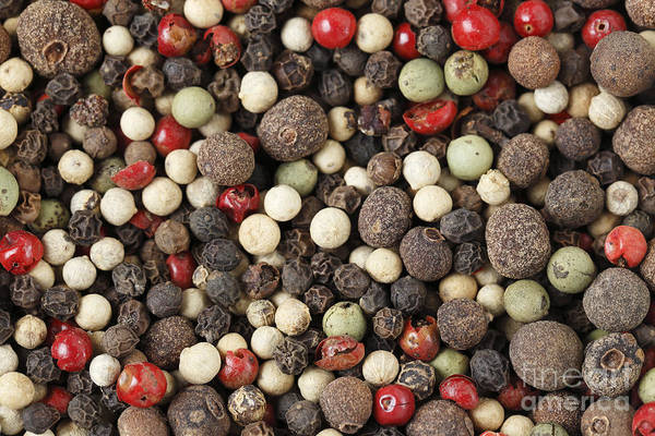 Photograph - Macro Of Mixed Peppercorns by Paul Cowan