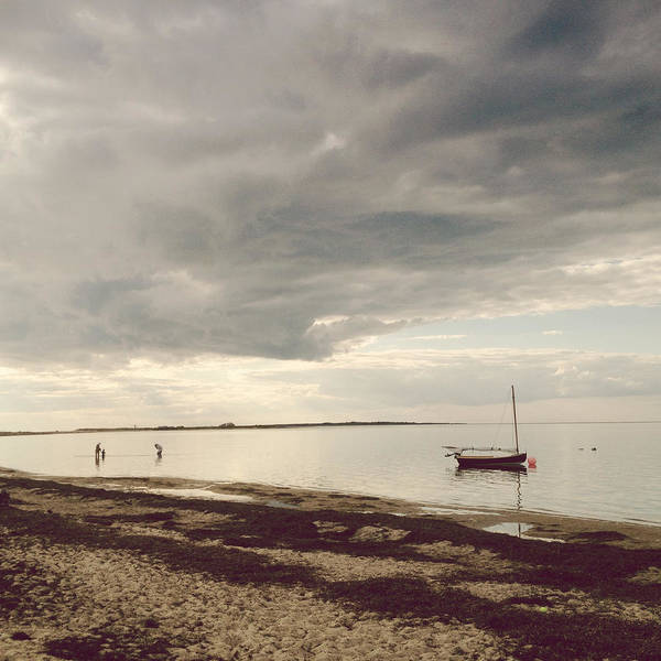 Photograph - Madaket Harbor by Natasha Marco