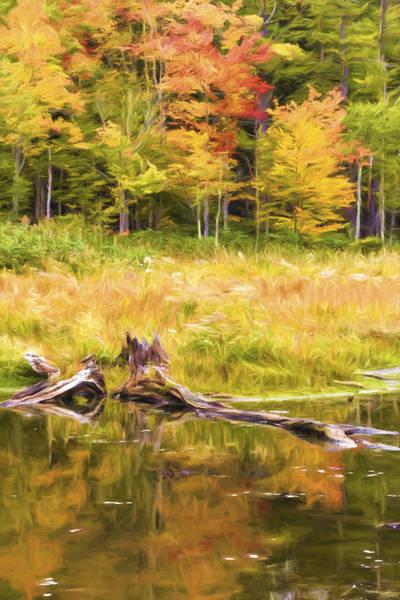 Photograph - Madame Sherri Autumn Pond by Tom Singleton