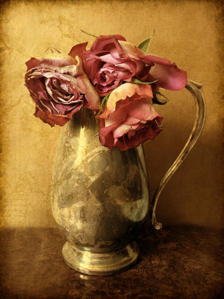 Photograph - Madeira Roses by Jessica Jenney