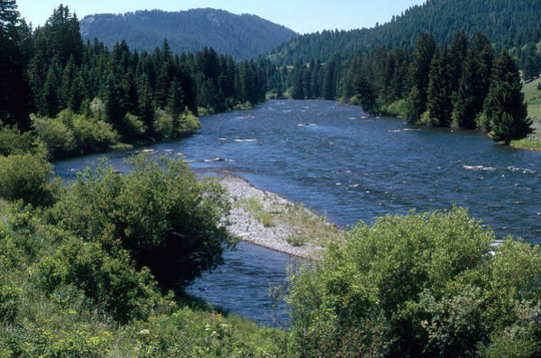 Wall Art - Photograph - Madison River by James Steinberg