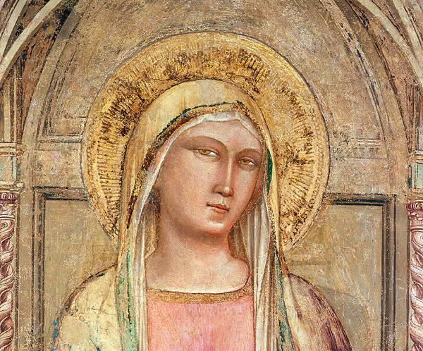 Fresco Wall Art - Painting - Madonna Del Parto by Taddeo Gatti