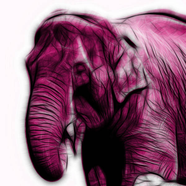 Magenta Elephant 3374 - F - S Art Print