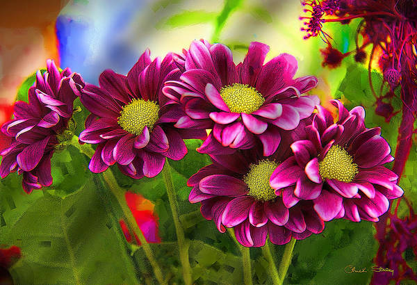 Photograph - Magenta Flowers by Chuck Staley