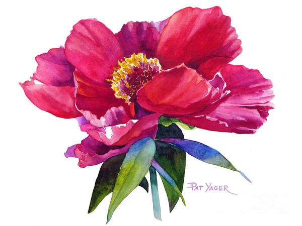 Wall Art - Painting - Magenta Peony by Pat Yager