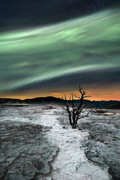 Dry Photograph - Magic Aurora by Liloni Luca