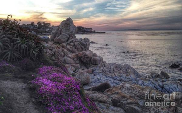 Photograph - Magic Carpet In Pacific Grove by Charlene Mitchell