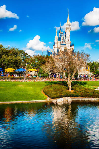 Photograph - Magic Kingdom Castle 004 by Michael  Bennett