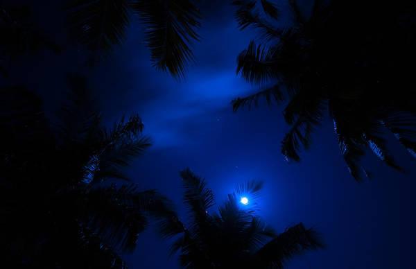 Photograph - Magic Of The Night Sky 1 by Jenny Rainbow