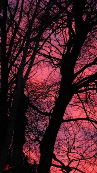 Photograph - Magic Sunset  by Colette V Hera  Guggenheim