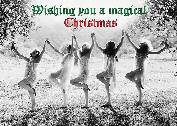 Wall Art - Photograph - Magical Christmas Greeting Card by Communique Cards