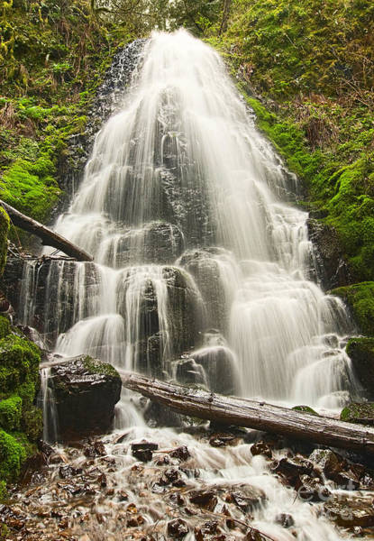 Plunge Photograph - Magical Falls - Fairy Falls In The Columbia River Gorge Area Of Oregon by Jamie Pham