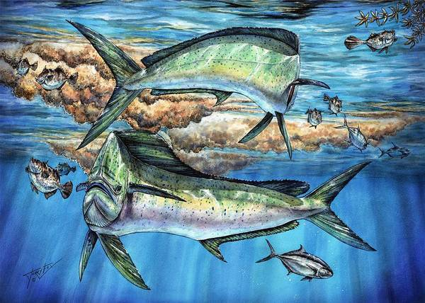 Painting - Magical Mahi Mahi Sargassum by Terry  Fox