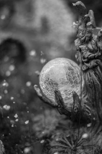 Photograph - Magical Orb by Bryant Coffey