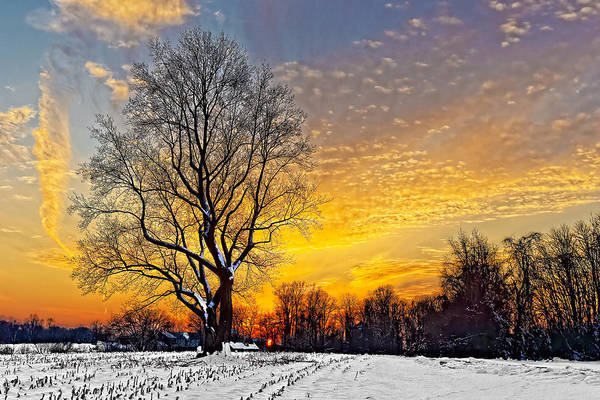 Photograph - Magical Winter Sunset by William Jobes