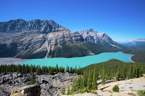 Peyto Lake Wall Art - Photograph - Magnificent Blue Waters Of Peyto Lake by Wan Ru Chen