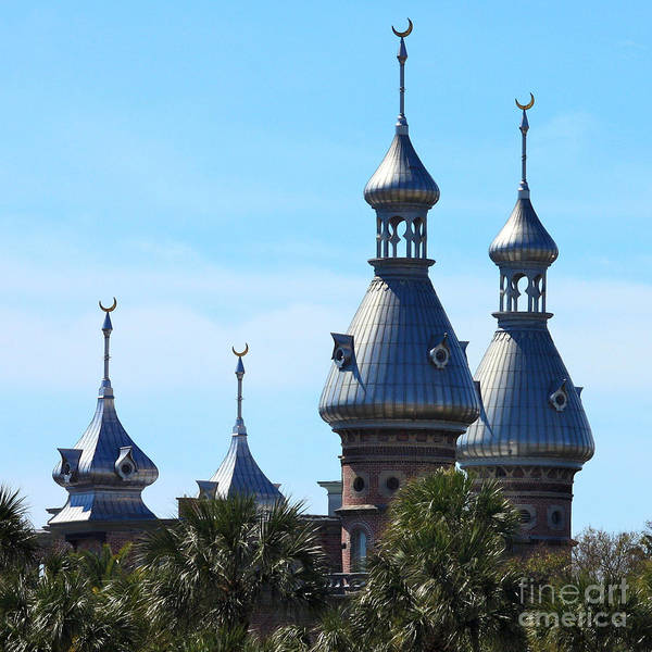 Photograph - Magnificent Minarets by Carol Groenen