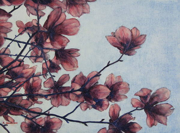 Magnolia Art Print by Andrew Danielsen