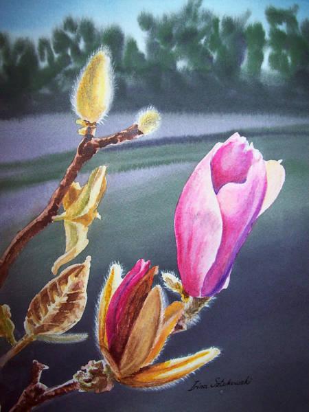 Golden Bloom Painting - Magnolia Blossoms by Irina Sztukowski